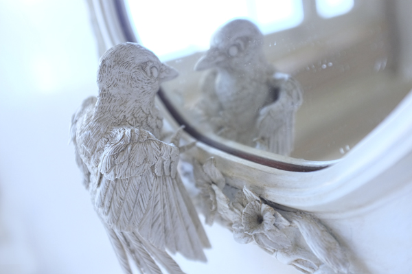 eurasian-magpie-wing-detail-mirror-christie-lau_blog_cl